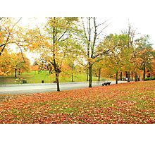 Glowing road in Autumn colors Photographic Print
