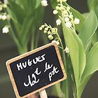 Lily of the Valley by Caroline Fournier