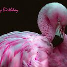 Happy Birthday by Linda More