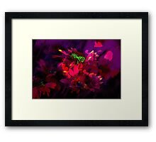 Secret Garden IX Framed Print
