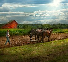 Country - Ringoes, NJ - Preparing for crops by Mike  Savad