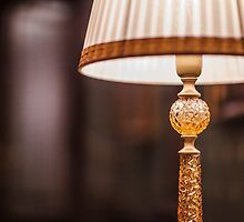 reading lamp with shade by mrivserg