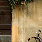 Pietrasanta Bicycle by Jason Kumar