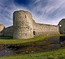 Pevensey Castle by Krys Bailey