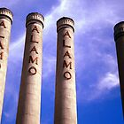 The Alamo 4 by Anita Schuler