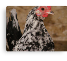 bainy rooster Canvas Print