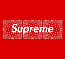 Supreme TNF Media Cases, Pillows, and More. by premebitch