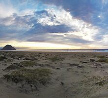 Morro Bay Sunset by IronyArts