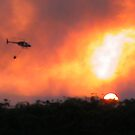 JetRanger Bushfire by PrecisionHeli