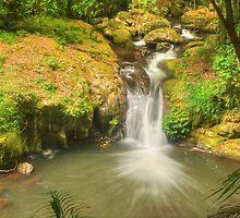 Bunyip Falls at Lamington by Michael Matthews