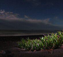 black moonlight sand by Merlin Grant
