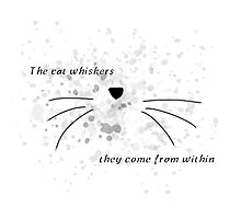 Dan & Phil | The cat whiskers- they come from within Photographic Print