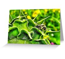 Bee Hiding Place Greeting Card