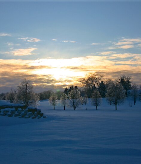 Winter Sunset by Mary Kaderabek-Aleckson