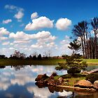 Japenese Garden by Gaby Swanson  Photography