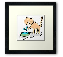 Cat With Water Framed Print
