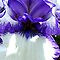 Ruffle Iris3 by Ann Warrenton