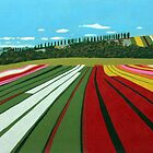 Tulip Farm, Table Cape by Richard Klekociuk