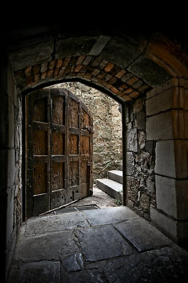~ the Back Door ~ by Lisa  Kenny
