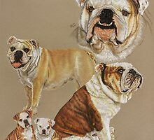 English Bulldog Collage by BarbBarcikKeith