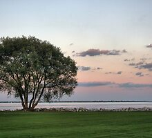 Sunset on the Lakeshore by Susan Schmalzel