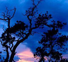 Arizona Evening by Aurobindo Saha