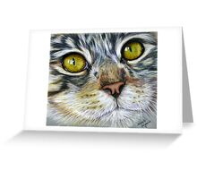 Blink Macro Cat Painting Greeting Card