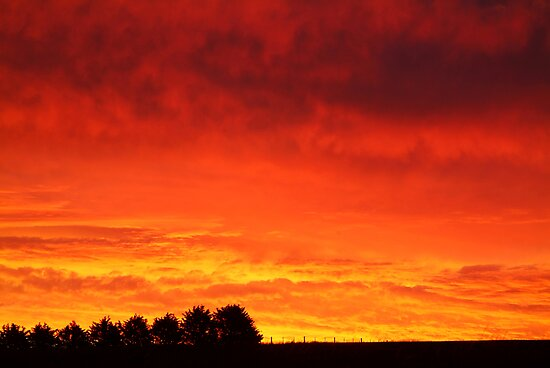 Barrabool Hills Rural Sunset by Joe Mortelliti