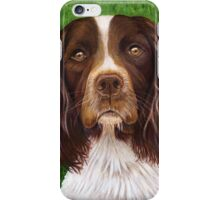 """Major"" Springer Spaniel iPhone Case/Skin"