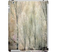 Stillness iPad Case/Skin