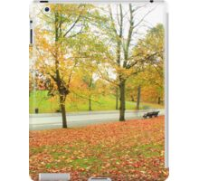 Glowing road in Autumn colors iPad Case/Skin