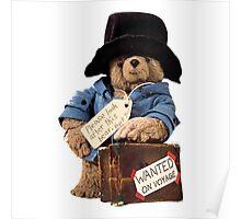 Paddington Bear 1 Poster