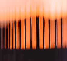Light Patterns Abstract Photography by tebell