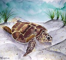 sea turtle painting 2 by derekmccrea
