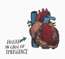 Break in case of Emergency. by Ava Grauls