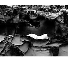 Contrast 02 Photographic Print
