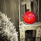 Red Bubble by Susan Bergstrom