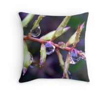Mirrors Of The World Throw Pillow