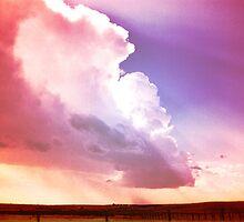 Prairie Sky by Dawne Olson