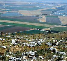 The landscape of the Gilbo'aa, Israel by Nira Dabush