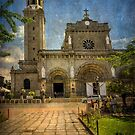 Manila Cathedral by Adrian Evans