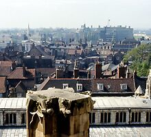 From the Minster by MayWebb