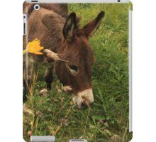 Hot Wheezing Donkey iPad Case/Skin