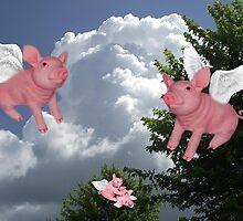 FLYING PIGS .. PIGGLETS DROP AND PLAY.. PICTURE AND OR CARD by ✿✿ Bonita ✿✿ ђєℓℓσ