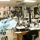 BioMedical Photography Lab 2 by Douglas Gaston IV