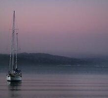 Late Summer, Late Evening at Oriental Bay by Peter Kurdulija