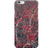 Winterberry iPhone Case/Skin