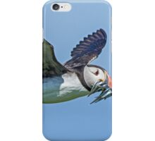 Puffin in flight with sandeels iPhone Case/Skin