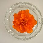 Marigold in cut-glass by Bruce Eitzen