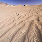 Desert on the Roof of the World by Hugh Chaffey-Millar